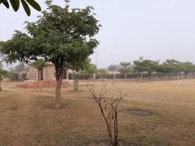 Parks Image of 60 Sq.ft Residential Plot for buy in Rohini Sector 28  for 6200000