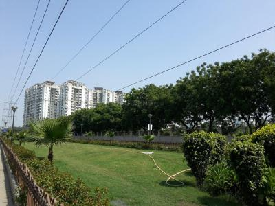 Parks Image of 0 - 950.0 Sq.ft 2 BHK Apartment for buy in Magic Builder Floor D