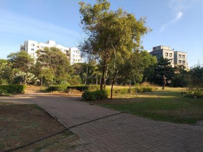 Parks Image of 550 Sq.ft 1 BHK Apartment for rent in Kothrud for 15000