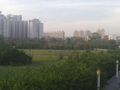Parks Image of 1750 - 5431 Sq.ft 3 BHK Apartment for buy in Supertech Emerald Court
