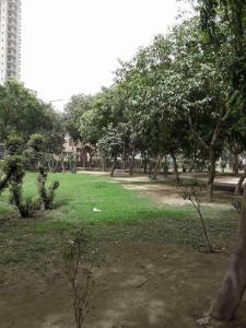 Parks Image of 1076.0 - 1615.0 Sq.ft Residential Plot Plot for buy in Jaipuria Sunrise Greens Block G And H