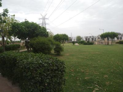 Parks Image of 845 Sq.ft 3 BHK Apartment for buy in Sector 75 for 2630000