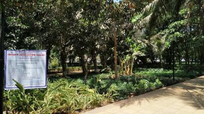 Parks Image of 2500 Sq.ft 3 BHK Apartment for rent in Juhu for 275000