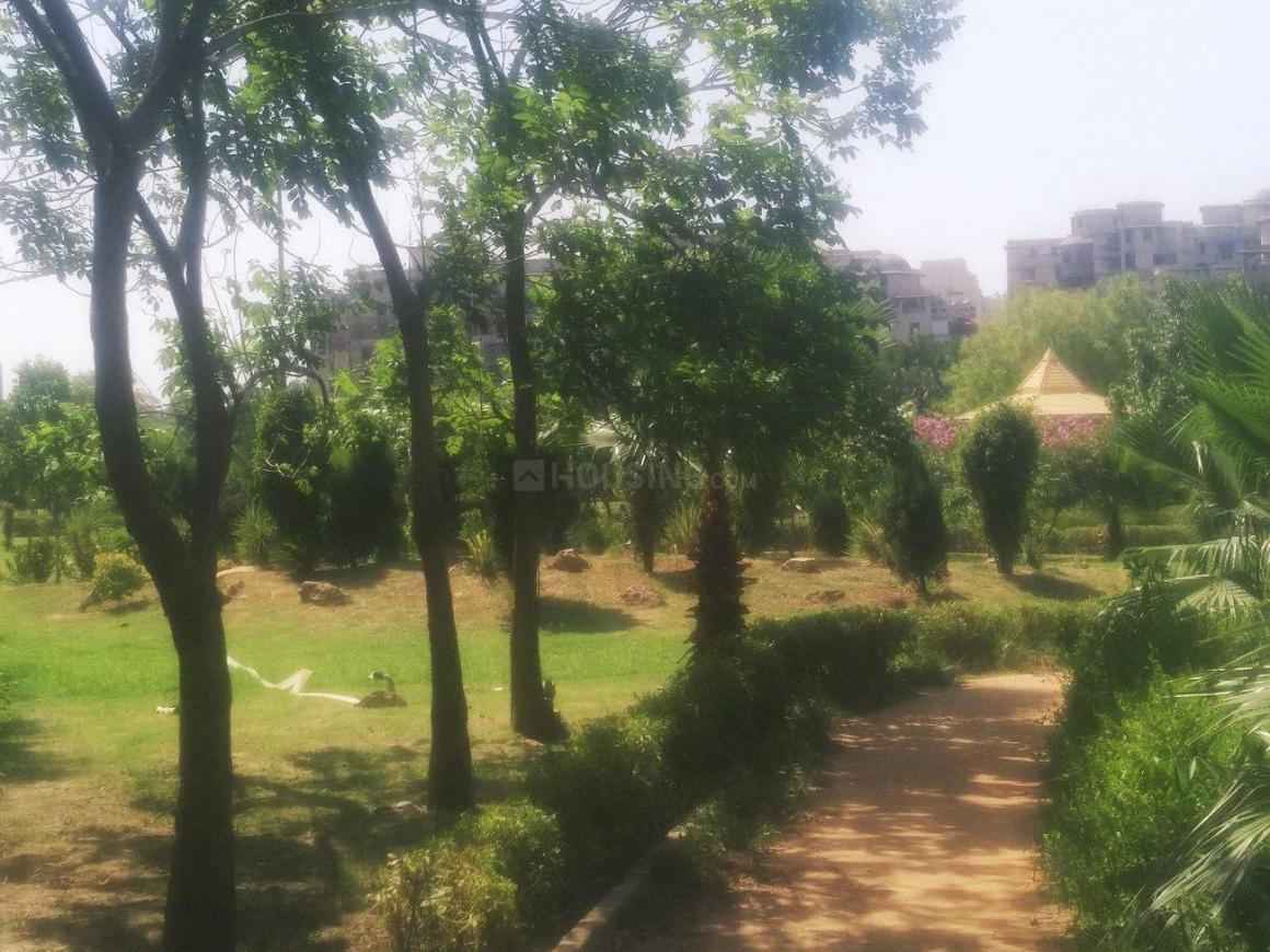 Sector Fifty Park
