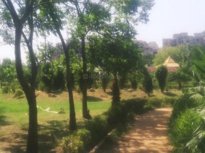 Parks Image of 1050 Sq.ft 2 BHK Apartment for rent in ATS Greens I, Sector 50 for 19500