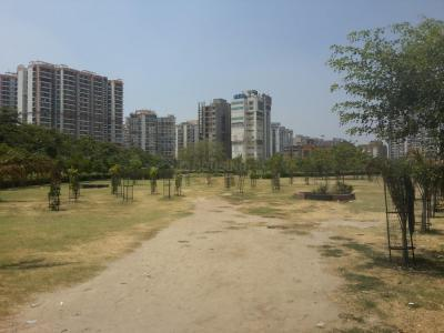 Parks Image of 577.0 - 597.0 Sq.ft 1 BHK Apartment for buy in Eldeco Edge