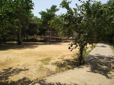 Parks Image of 0 - 1570 Sq.ft 3 BHK Independent Floor for buy in Shreeji R. K. Homes - 2