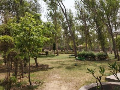Parks Image of 0 - 333 Sq.ft 1 BHK Independent Floor for buy in Narayanji Site-2