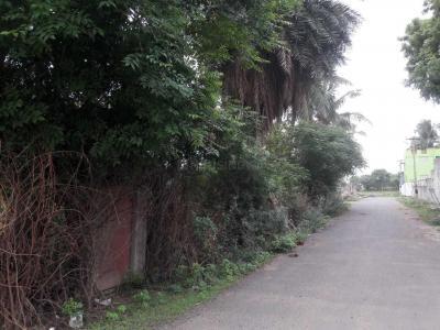 अभिनिथा फ़ाउंडेशन विकास वैभव में खरीदने के लिए 870.0 - 1213.0 Sq.ft 2 BHK अपार्टमेंट पार्क  की तस्वीर