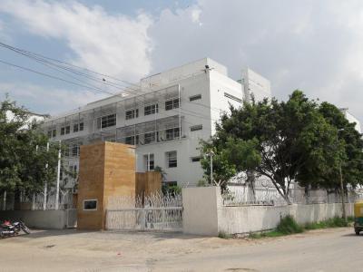 Schools &Universities Image of 450 - 650 Sq.ft 1 BHK Apartment for buy in DDA Om Apartment