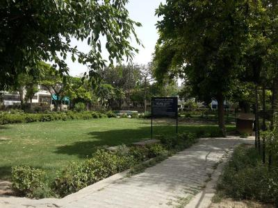 Parks Image of 670.0 - 1080.0 Sq.ft 1 BHK Apartment for buy in NS Boulevard