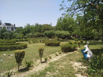 Parks Image of 300 Sq.ft 1 RK Independent House for rent in Sector 40 for 11000