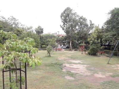 Parks Image of 1125 Sq.ft 3 BHK Apartment for buy in Paschim Vihar for 14000000