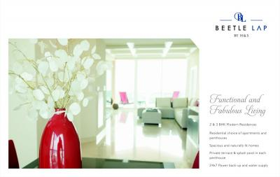 Home and Soul Beetle Lap Brochure 7