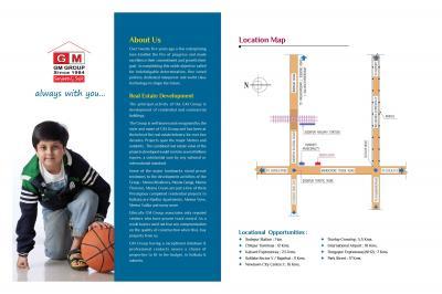 GM Meena Icon Brochure 2