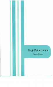 Drushti Sai Pradnya Brochure 1