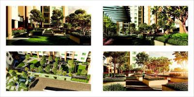 Raojee Palladium Plus Brochure 17