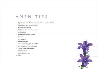 Reelicon Fairy Bell Brochure 13