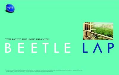Home and Soul Beetle Lap Brochure 10