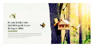 Tridhaatu Tridhaatu Aranya Brochure 24