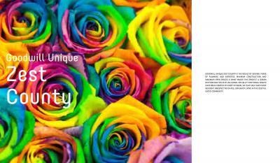 ZEST COUNTY Brochure 3