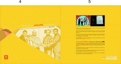 Binori Solitaire Brochure 3