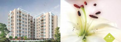 Alliance White Lily Brochure 7
