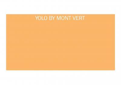 Mont Vert Homes Yolo Brochure 1