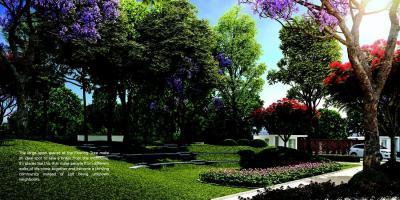 Capstone Life Flowing Tree Brochure 8