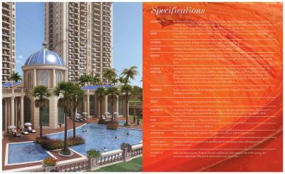 ATS Marigold Brochure 15