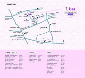 Vascon Tulips Brochure 10
