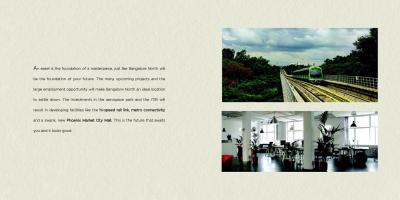 Capstone Life Flowing Tree Brochure 32