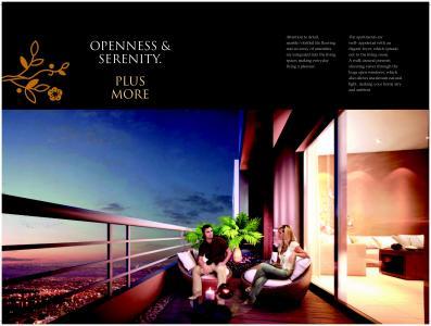 Eden Tolly Signature Plus Brochure 8