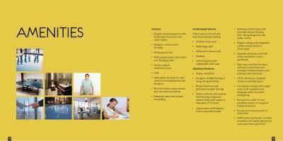 Patel Smondo Brochure 13