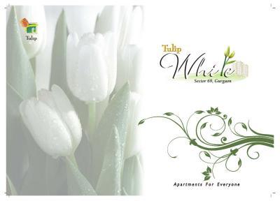 Tulip White Brochure 1