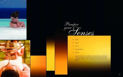 Golden Opulence Brochure 15