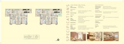 Saltee Splendora Brochure 13