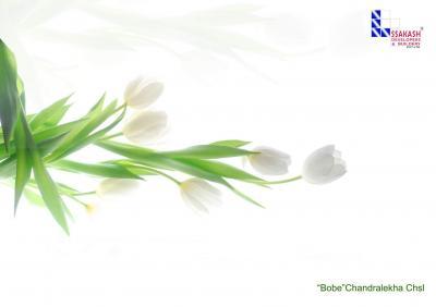 Ssakash Bobe Chandralekha CHSL Brochure 1