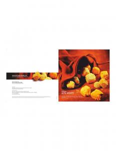 Ventures Alta Monte Brochure 1