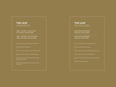 SS The Leaf Brochure 14