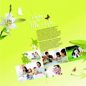 Divyansh Flora Brochure 2