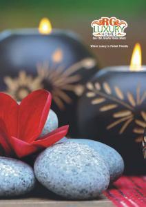 RG Luxury Homes Brochure 1