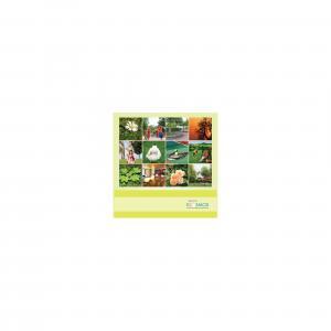Jaypee Greens Kosmos Brochure 9
