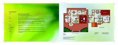 Hilite Springdale Brochure 6