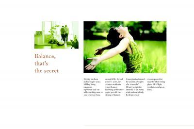 Salarpuria Sattva Divinity Brochure 5