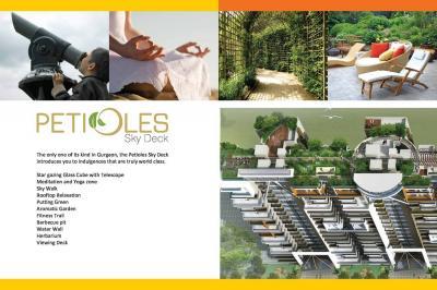 Sare Green Parc Petioles Brochure 10