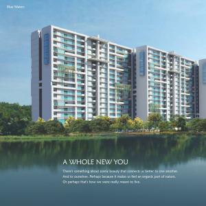 SJR Blue Waters Brochure 3