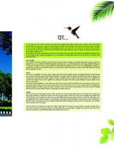 Axiom Palm Floors 1 Brochure 3