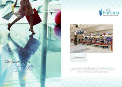 Atul Blue Fortuna Brochure 5
