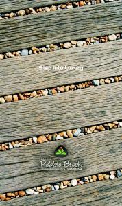 Jain Pebble Brook Phase 2 Brochure 1